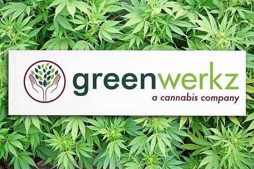 Custom Rectangle Stickers for greenwerks a cannabis company
