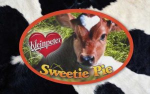 Custom Oval Stickers for Kleinpeter Sweetie Pie