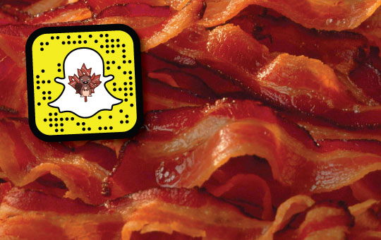 Beaver-and-Bacon-Sponsored-Stickers-2016