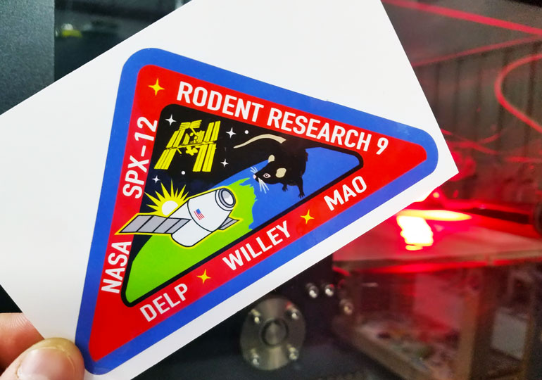 rodent research logo nasa - photo #25