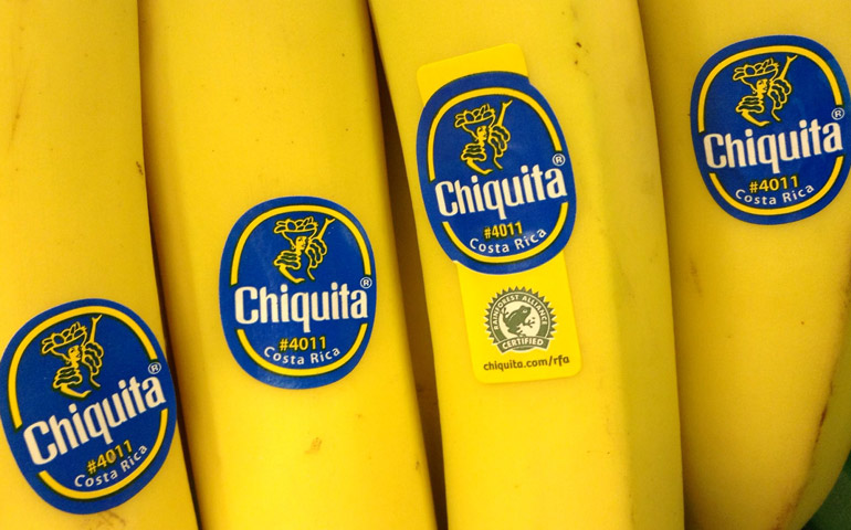 Image-of-Chiquita-Banana-Original-Image-from-JeepersMedia-shared-on-StickerGiant-Blog-2019