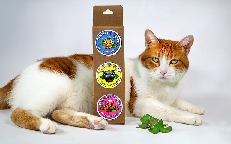 Skinny-Petes-Catnip-Labels-on-a-box-of-catnip-with-Tucker-the-Cat-to-show-custom-labels-printed-by-StickerGiant