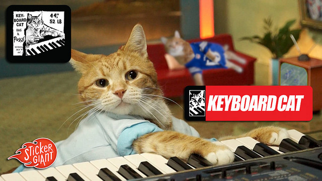 Keyboard-Cat-Custom-Stickers-Printed-by-StickerGiant